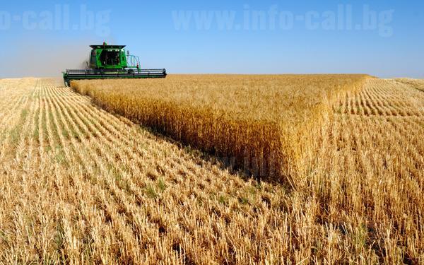 Инна Агро 2006 - Производство на селскостопанска продукция гр. Враца