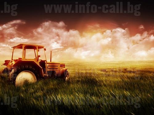 Дунав ленд агро - Зърнопроизводство в Русе