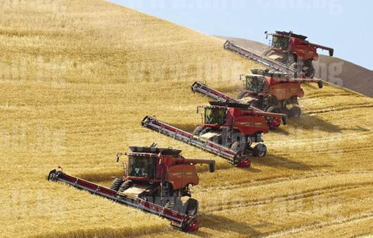 Земеделска Кооперация Бдинци - Производство земеделска продукция Бдинци, Добрич