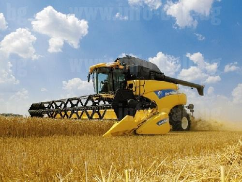 ВПТК Зора 99 - Производство и търговия на зърно в Обнова, Левски