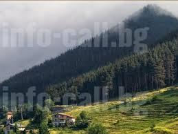 Държавно горско стопанство Своге