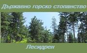 ДГС Лесидрен