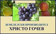ЗП Христо Гочев