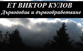 Виктор Кулов