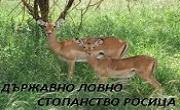 Държавно ловно стопанство Росица