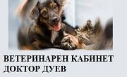 ВЕТЕРИНАРЕН КАБИНЕТ ДОКТОР ДУЕВ