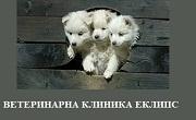 ВЕТЕРИНАРНА КЛИНИКА ЕКЛИПС