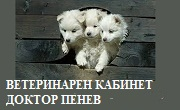 ВЕТЕРИНАРЕН КАБИНЕТ ДОКТОР ПЕНЕВ