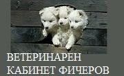 ВЕТЕРИНАРЕН КАБИНЕТ ФИЧЕРОВ
