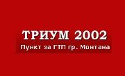 Триум 2002