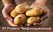 ЕТ Райко Чифлиджанов