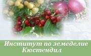 Институт по земеделие Кюстендил