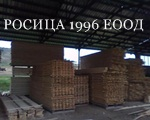 РОСИЦА 1996