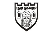 Община Цар Калоян