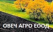 Овеч Агро