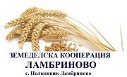 ЗК Ламбриново