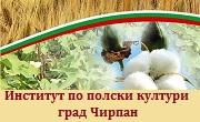 Институт по полски култури Чирпан