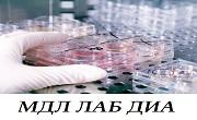 МДЛ Лаб Диа